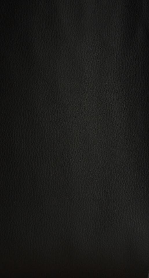 Tekonahka Musta
