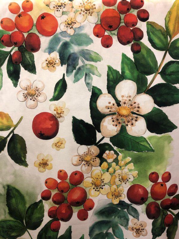 Omenankukka